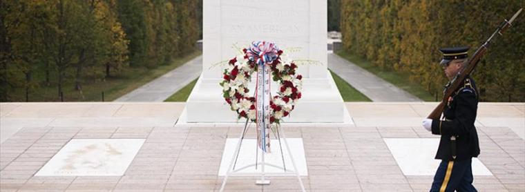 Arlington Tomb of the Unknown 2015