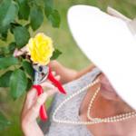 rosie gardening